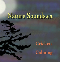Crickets Calming CD